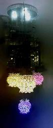 Beautiful Crystal Colorful LED Hanging Light