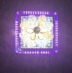 Square Shape Surface Mounted Multi Colour LED Light
