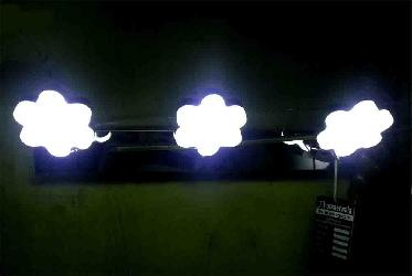 Flower Shape Three LED Picture Wall Light